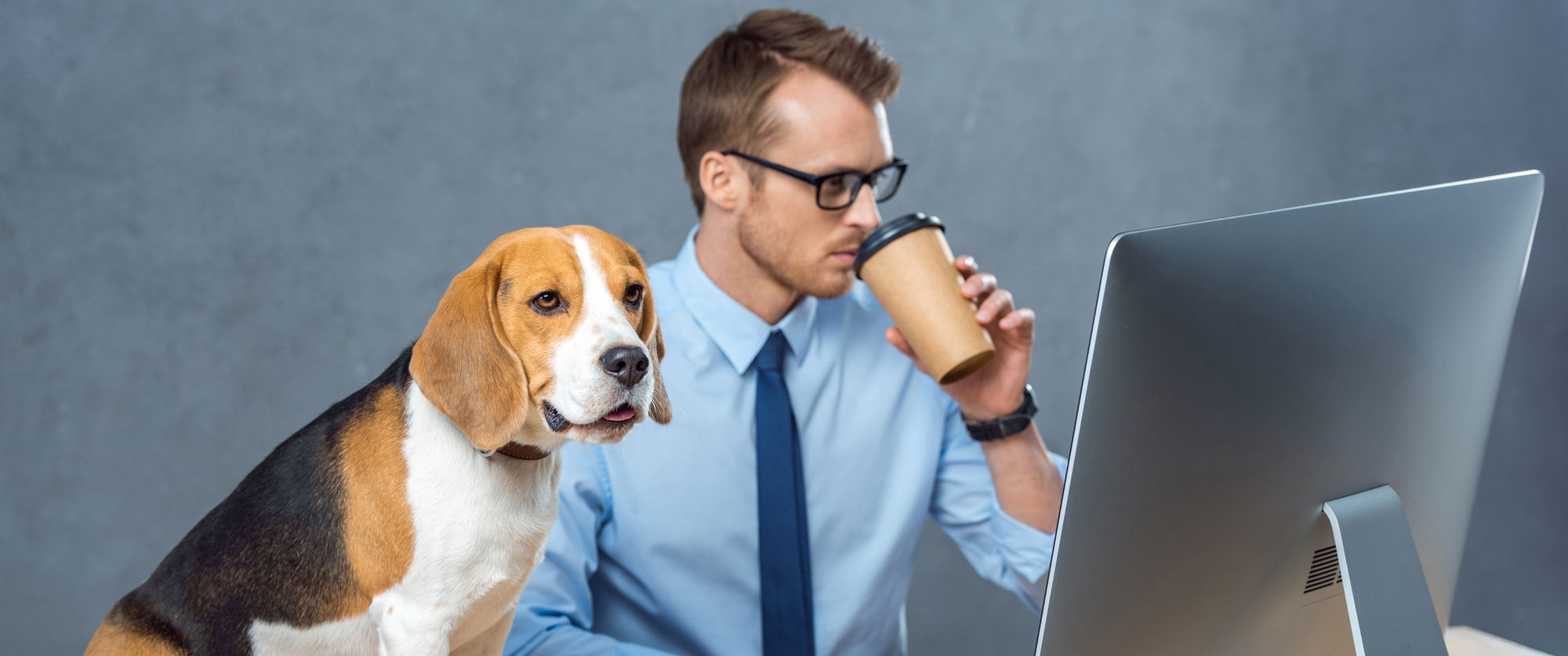 An individual in a blue collared shirt and tie drinks coffee while working on a computer at a desk, with a small puppy sitting on the desk next to them.