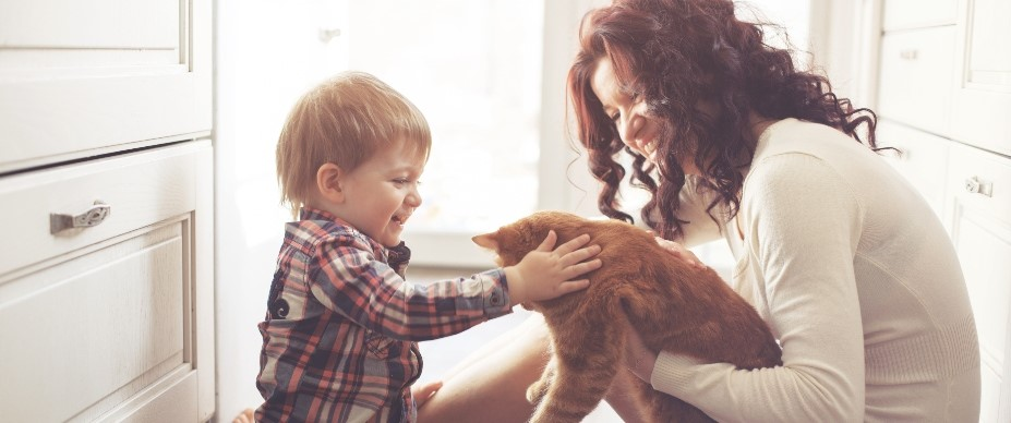Child interacting with cat